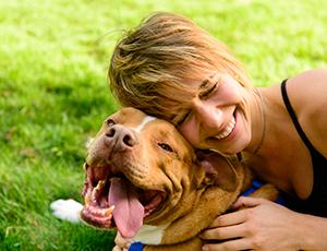 Dog trainer Asheville NC